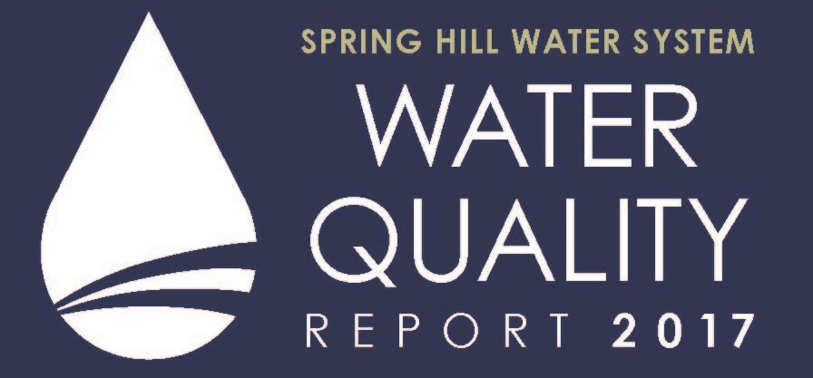 Water Quality Report-button-sized for website.jpg