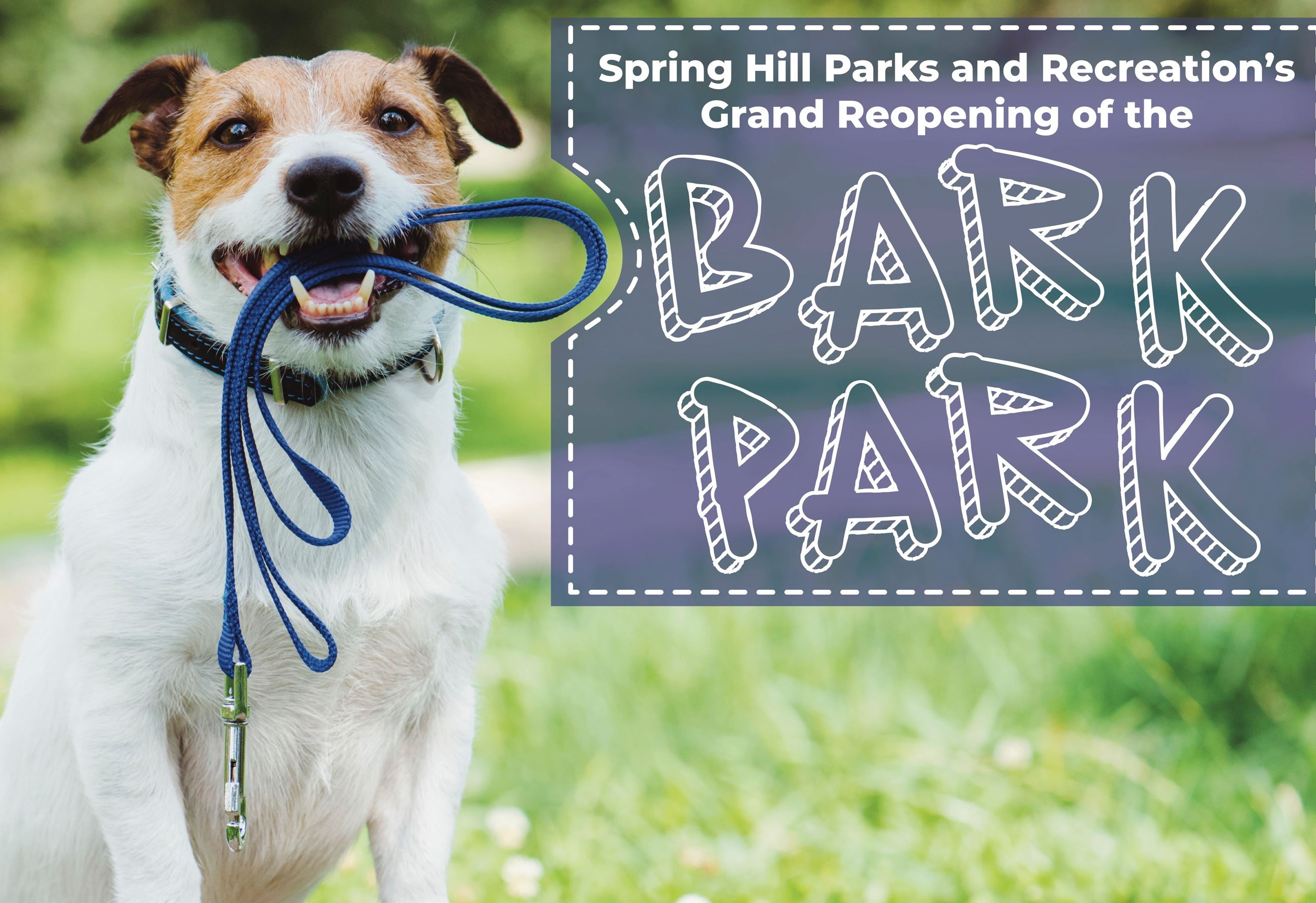 Expanded and renovated Bark Park set for June 1 grand opening